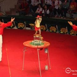 Dịch vụ cho thuê xiếc thú chuyên nghiệp tại Hà Nội