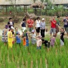 Dịch vụ tổ chức team building tại Long Việt